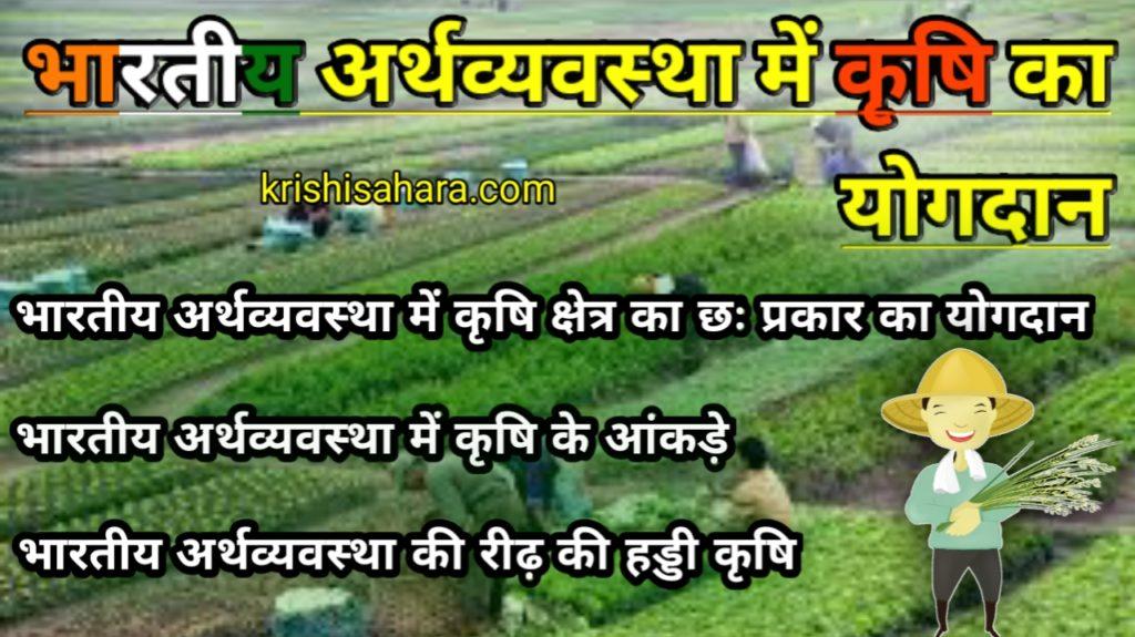 भारतीय कृषि अर्थव्यवस्था
