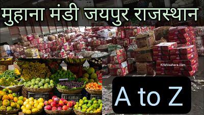 मुहाना-मंडी-जयपुर