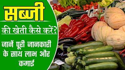सब्जी-की-खेती | सब्जी की खेती कैसे करें | सब्जी की खेती | सब्जी की खेती की जानकारी | sabjiyon ki kheti | सब्जियों की अगेती खेती | माहवार सब्जी की खेती | बरसात में सब्जी की खेतीं | गर्मी की सब्जी की खेती