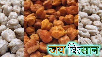 chane-ka-bhav